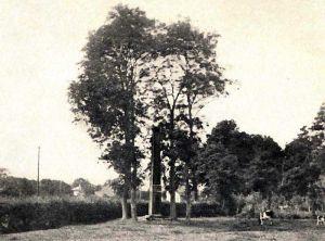Obelisk--frueher